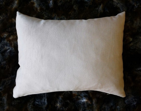Throw Cushion 17